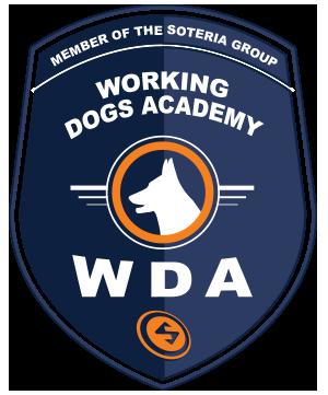 logo-WDA
